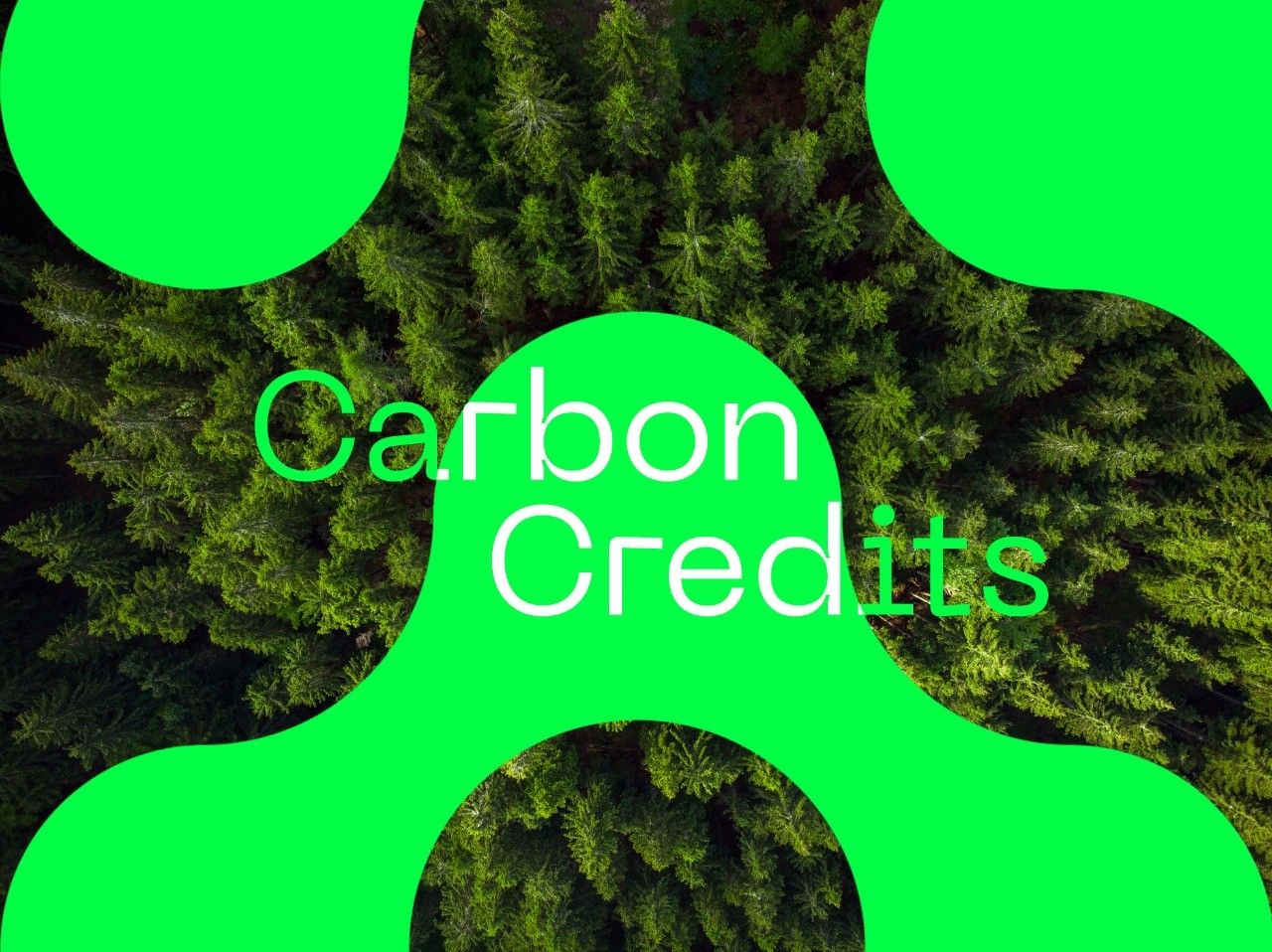 Oxychain - Carbon credits